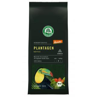 Plantagen Kaffee - gemahlen -