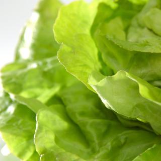Salat vom Hof