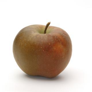 Äpfel Boskop aus Sommerland