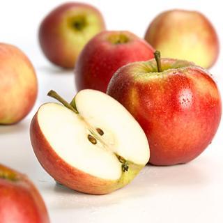 Äpfel Elstar aus Sommerland