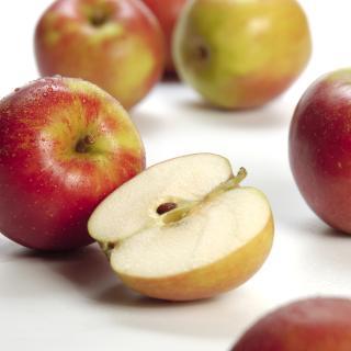 Äpfel Holsteiner Cox aus Sommerland
