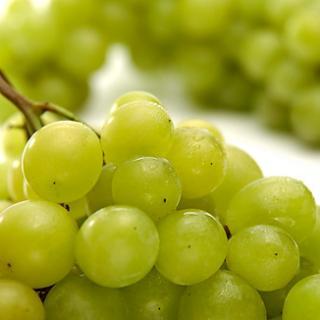 Weintrauben weiß kernlos