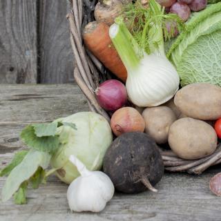 Gemüse 15