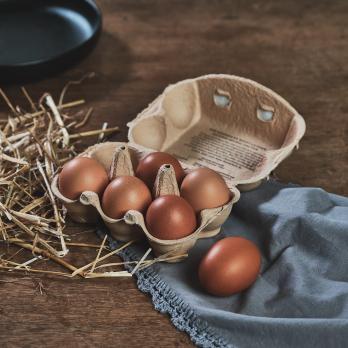 Eier 6 Stück vom Hof